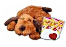 The Puppy Essentials