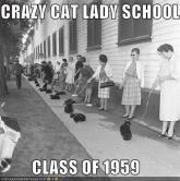 funny-pictures-crazy-cat-lady-school